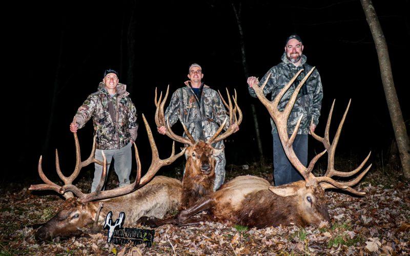 group elk hunt photo