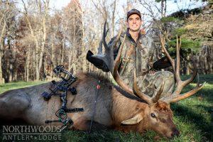 Guided bull elk hunts